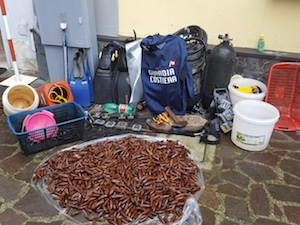 Fermati tre pescatori di frodo con un quintale di datteri