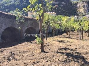 Dal giardino di Villa Fiorentino riaffiorano le antiche mura