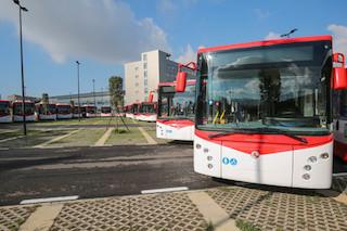 Eav: In arrivo 132 nuovi bus, 10-15 in costiera sorrentina