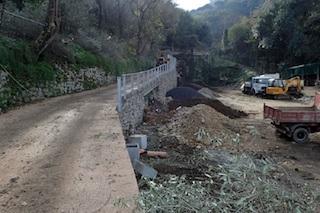 Rifacimento di via Mirto, segnalazione del Wwf