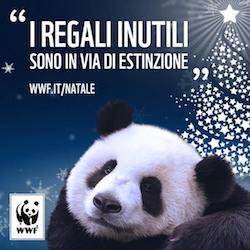 I consigli del Wwf per un Natale ecosostenibile