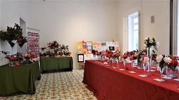 Inaugurata la Mostra della Camelia di Villa Fiorentino – foto –