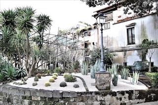 Si rinnova con aiuole di piante grasse il giardino di Villa Fiorentino