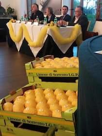 convegno-limone-sorrento-2