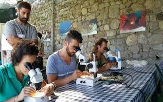 Lezioni di Biologia Marina nel Parco di Punta Campanella