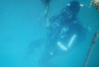 La Capitaneria sequestra 3 tonnellate di frutti di mare