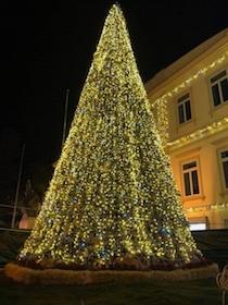 albero-natale-santagnello-1