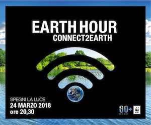 WWF_EHGlobal_Poster_Digital Assets 300x250-08122017