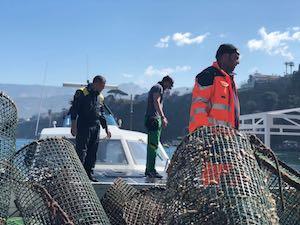 La Finanza sequestra 150 nasse a Marina Piccola – foto –