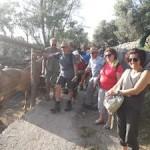 escursione-joelette-punta-campanella