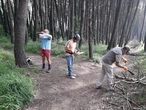 pulizia-pineta-27maggio-1