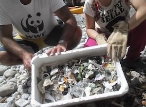 Volontari raccolgono la plastica dal Fiordo di Crapolla