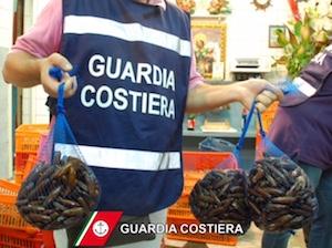 Controlli Capitaneria sulla pesca, 1.000 kg di prodotti sequestrati e multe per 60mila euro