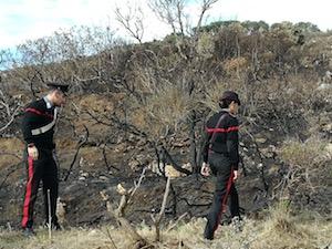 Brucia foglie per gioco, 15enne appicca incendio a Capri – video –