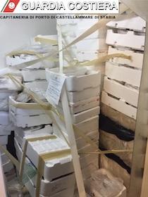 Blitz Capitaneria nelle pescherie, sequestrati 340 kg di prodotti ittici