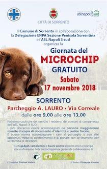 A Sorrento giornata del microchip gratuito per i cani