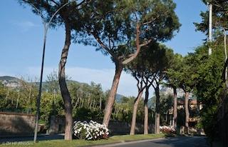 Avvallamento dell'asfalto, chiuso il viale dei Pini a Sant'Agnello