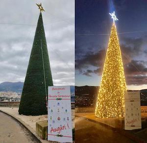Un grande albero di Natale per dare il benvenuto in costiera sorrentina