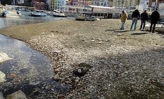 Mareggiate a Sorrento: Ripulita la spiaggia di Marina Grande, ora i fondali