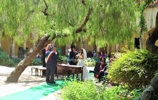 Abbattuto l'albero simbolo del chiostro di San Francesco di Sorrento, denuncia Wwf