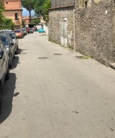 Taglio di alberi nel centro di Sorrento. Il Wwf: Un altro parcheggio?