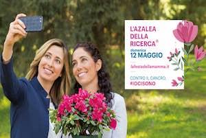 azalea-della-ricerca-airc-2019-sorrento