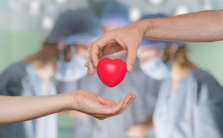 L'Asl Napoli 3-Sud in campo per la donazione di organi
