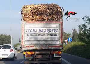 legna-illegale-cites