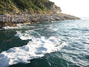 Schiuma sul mare di Sorrento, le foto del presidente Wwf
