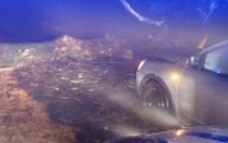 Albero cade su auto al Faito, paura per una mamma e le due figlie