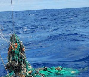 I pescatori recuperano 19 tonnellate di rifiuti dal mare della Campania. I risultati del progetto Remare presentati a Piano di Sorrento