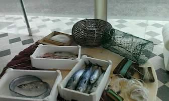 Amp Punta Campanella nelle scuole per promuovere il consumo di pesce povero