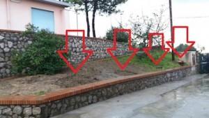 taglio-alberi-scuola-colli-3