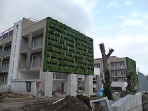 Housing sociale Sant'Agnello, mozione di sfiducia a sindaco e giunta