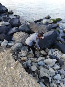 raccolta-rifiuti-spiaggia-seiano-1