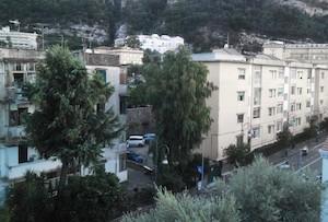 Ancora alberi abbattuti a Sorrento, denuncia Wwf