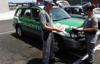Controlli dei Carabinieri Forestali in provincia di Napoli, sequestrati 250 kg di alimenti