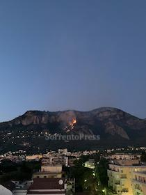 Incendio nella zona di Alberi a Meta