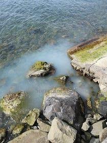 La denuncia: Sversamenti nel mare di Massa Lubrense – foto –