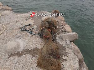 Rete da pesca illegale alla Regina Giovanna, multa e taglio dei punti dalla licenza