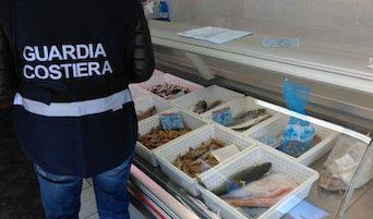 Controlli sulla qualità del pescato in ristoranti e rivendite di Massa Lubrense, multe e sequestri