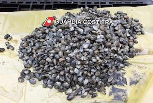 Controlli sui prodotti ittici e per la sicurezza del lavoro, denunce e sanzioni in costiera sorrentina