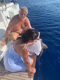 Una rete di soccorsi tra le Eolie e Punta Campanella per salvare una tartaruga