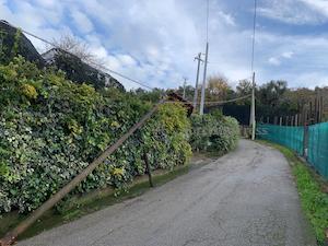 Pali pericolanti e grovigli di cavi, a Sorrento allarme linee aeree – foto –