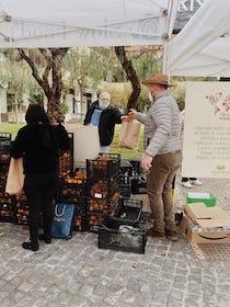 Ultimo appuntamento con le Domeniche ecologiche di Sorrento