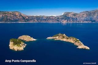 Un campo boe a Li Galli presentato dal Parco di Punta Campanella agli Stati generali del turismo di Sorrento