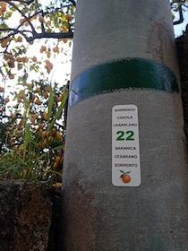 La burocrazia rallenta il progetto Tolomeo 2021 a Massa Lubrense