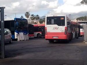 Nuovi bus e più autisti Eav a Sorrento e costiera