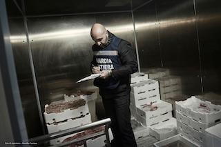 In un centro ittico di Sorrento sequestrate 2 tonnellate di pesci con multe per 26mila euro