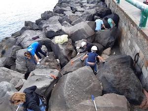 Rimossi quintali di rifiuti dalla scogliera di Marina Piccola a Sorrento